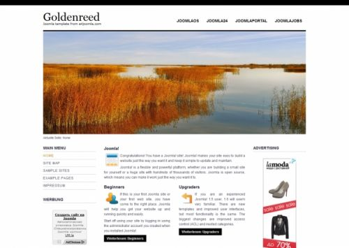 Goldenreed